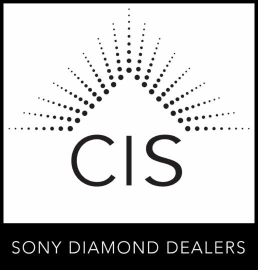CIS_logo_PLAIN